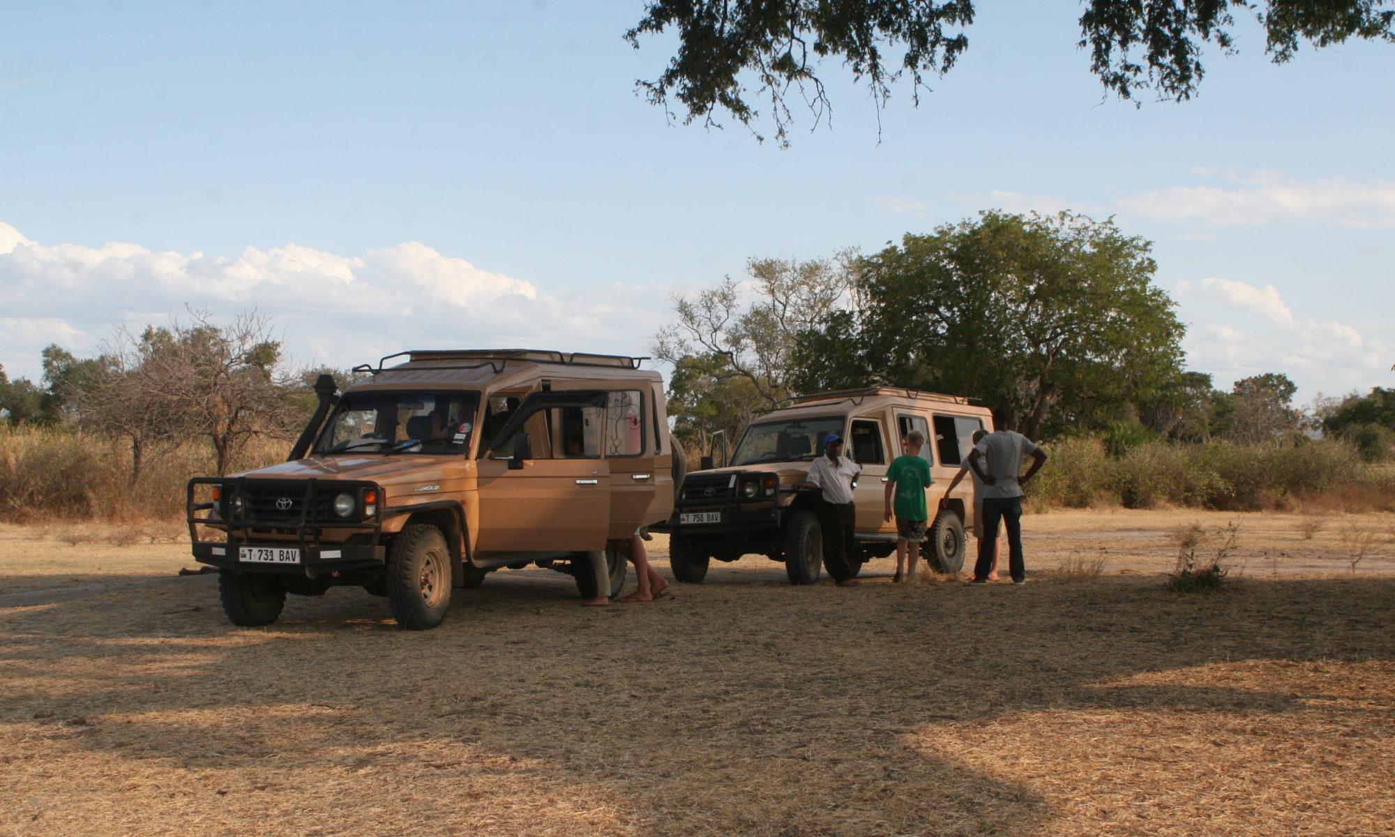 Safari with Remote Safari Company